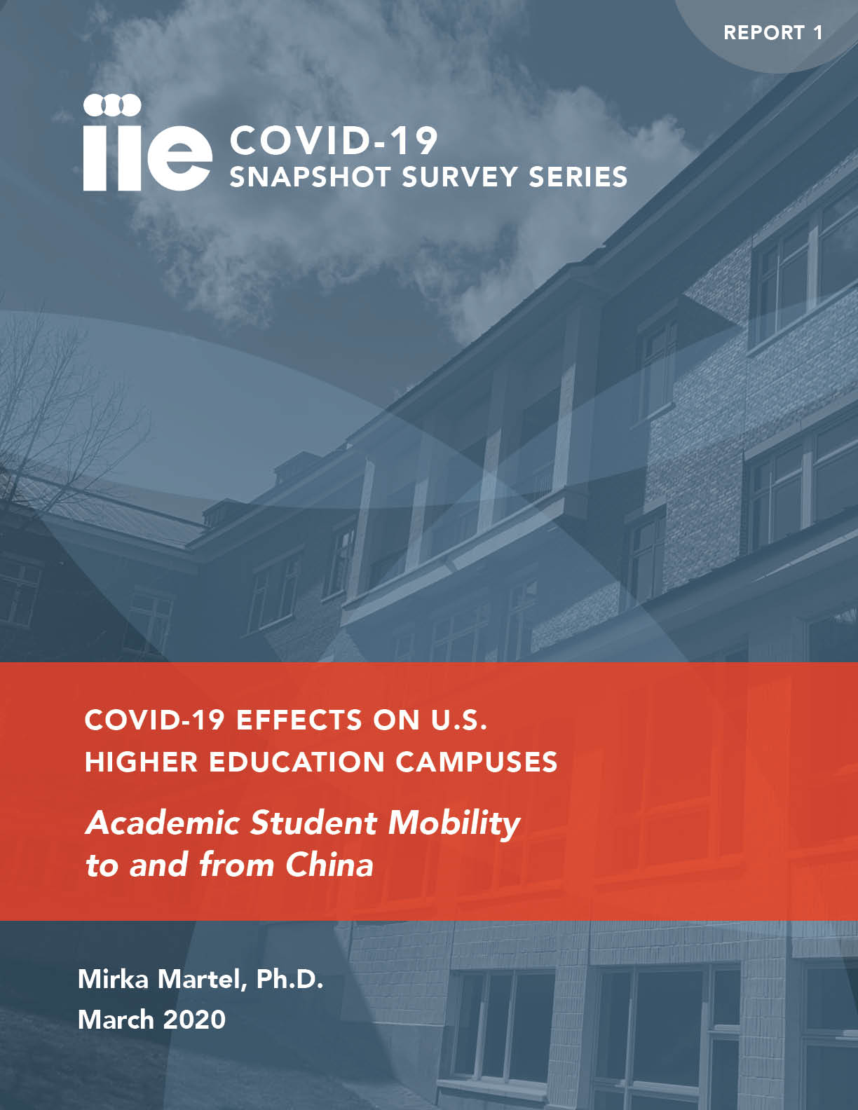 Cover of COVID-19 Snapshot Survey Series Report 1