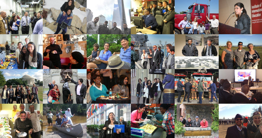 Collage: Photos of IVLP Participants